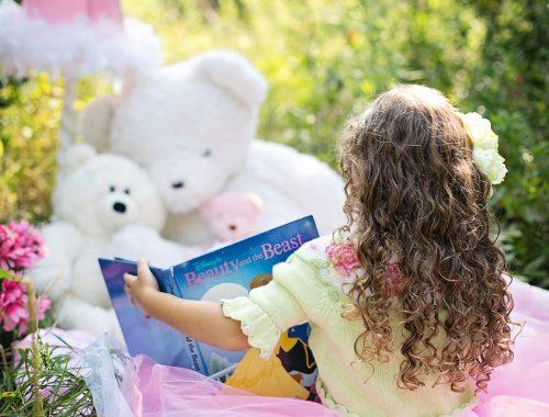 Meilleurs Livres Enfants 6 Ans Fille Idees Cadeaux 2019